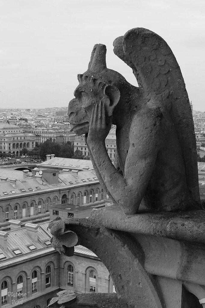 Взгляд химеры на Париж..