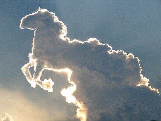 Николай парфенюк - плыли облака - скачать музыку бесплатно