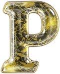 алфавит золотой1 15