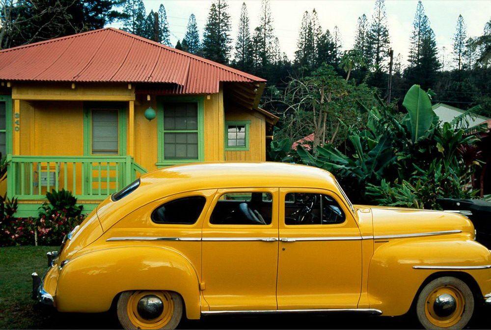 Жизнь в цвете: жёлтый
