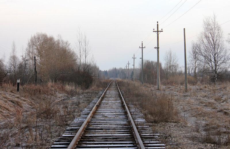 Перегон Великие Луки - Опухлики, недалеко от начала экс-станции Забойники