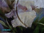 http://img-fotki.yandex.ru/get/4512/chitanata.0/0_56a3b_a335cc9_S.jpg