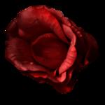 JoeGDesign_DarkLoveFreebie_element13.png