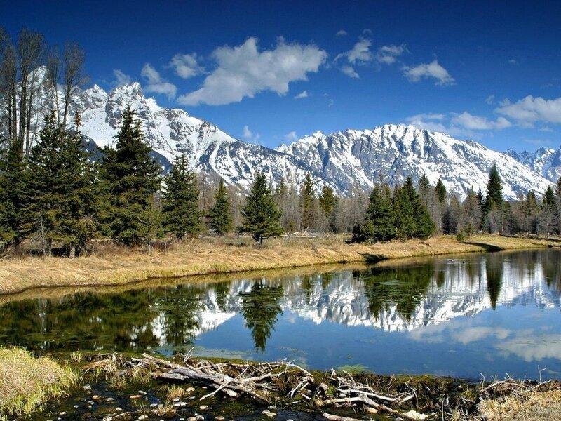 Устремленные ввысь заснеженные пики, строгие очертания, уникальная флора и фауны - именно таковыми являются горы...