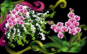 [Resim: 0_49323_a14d3fb7_M.jpg]