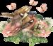 Rose Victorienne(элементы)  6