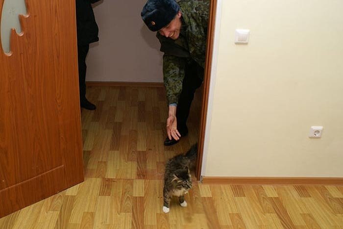 известно, служебное жилье для военнослужащих немногих долгие