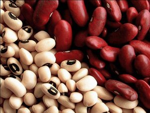 В Приморье на иностранном судне выявлены заражённые продукты питания из Китая