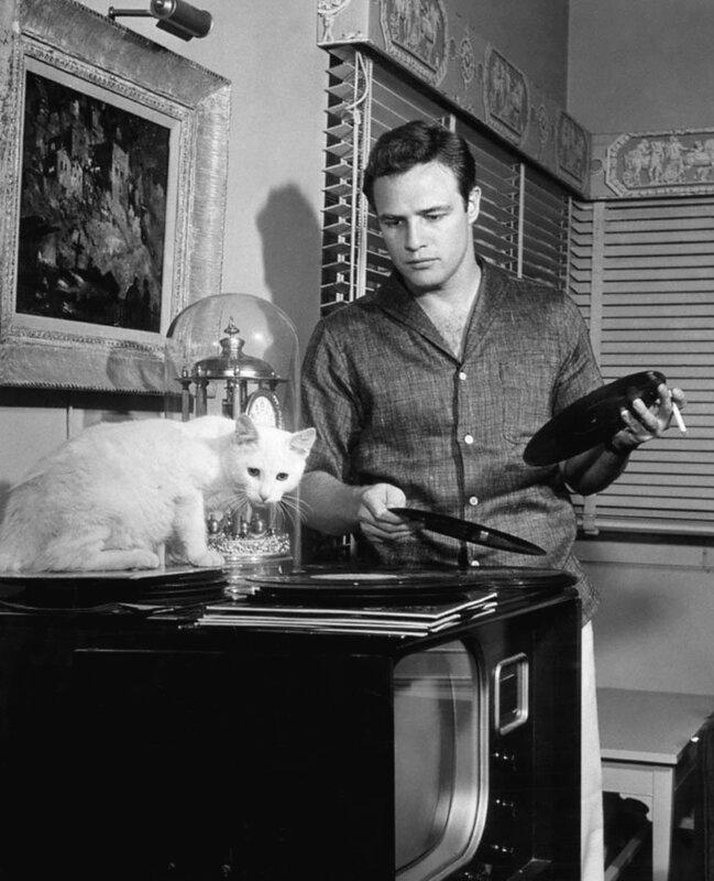 Marlon Brando by Murray Garrett, 1954