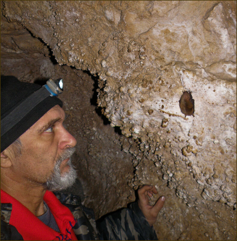 Обитатели пещер