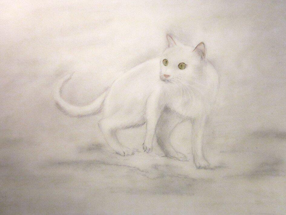 жил да был белый кот за углом)