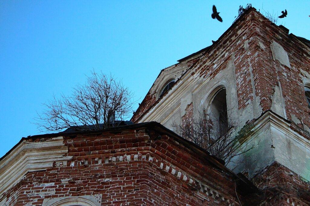 http://img-fotki.yandex.ru/get/4513/for-our-photos.10/0_5425f_bc6da740_XXL.jpg
