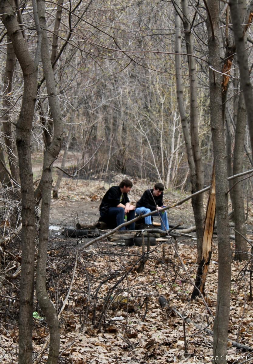 Акция 'Чистый лес', 3-я Дачная, Саратов, 30 апреля 2011 года.