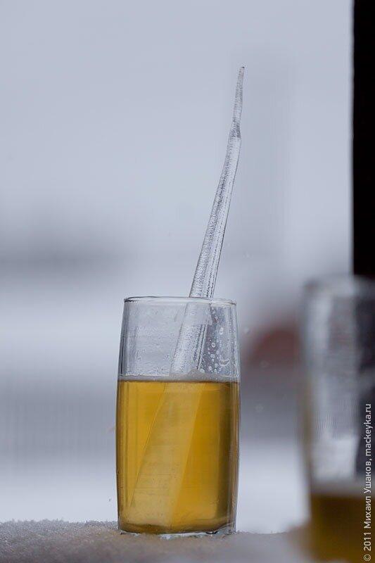 самодельное пиво