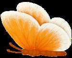 бабочки 0_58f01_caca8072_S