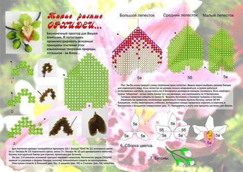 свой цитатник или сообщество! колье-орхидея. из инета.  Прочитать целикомВ.