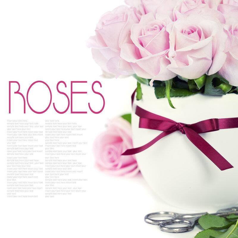 Обои для рабочего стола черные розы