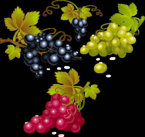 виноград (20).png