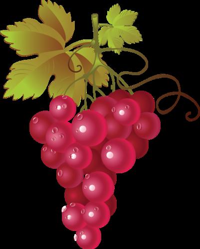 виноград (24).png