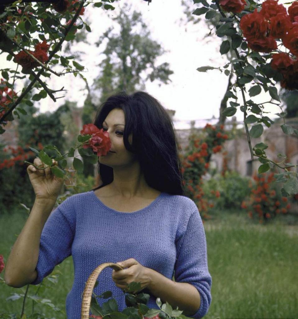 Софи Лорен