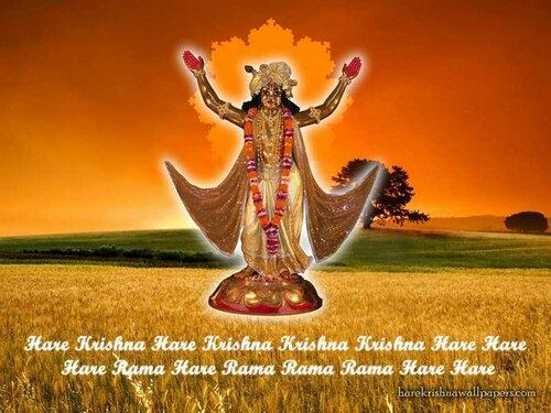 ������� �������� (Chaitanya Mahaprabhu)