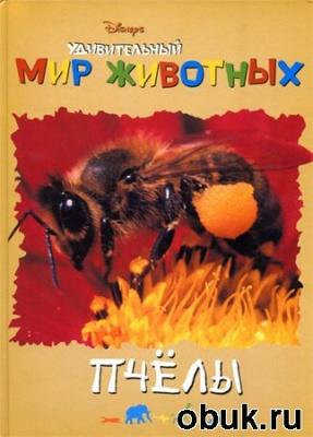 Журнал А. Кочаров. Удивительный мир животных. Пчёлы