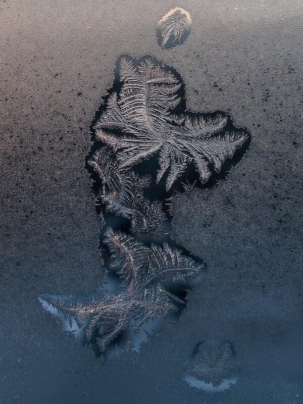 Существо из морских глубин