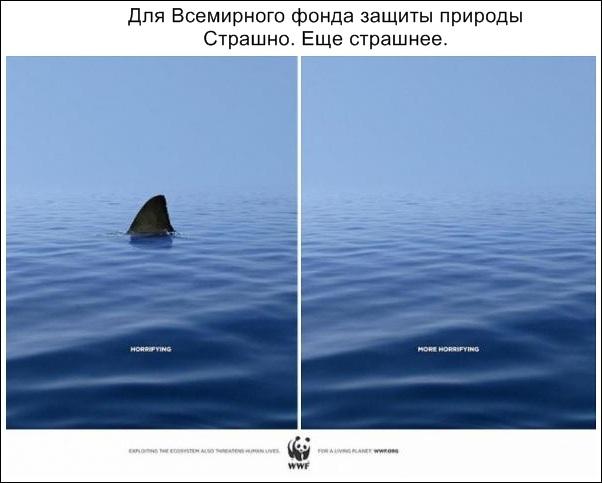 убедительная реклама_05.jpg