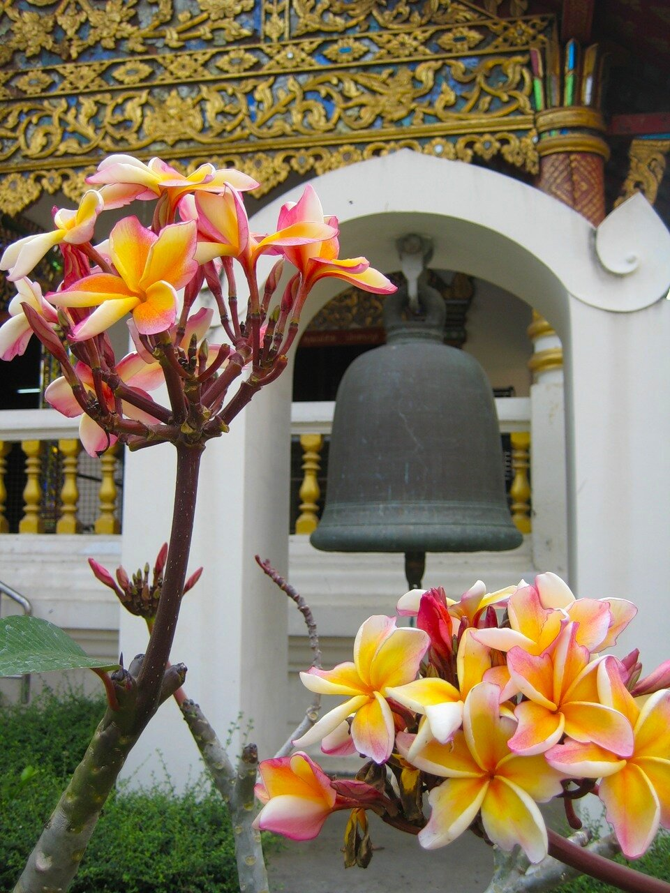 Тайланд весной 2011