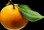 Апельсин  0_59e69_bbf480ad_S
