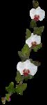«садовый фэн-шуй» 0_65d4c_b9473948_S