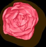 kristen_especiallyforyou_flower01_sh.png