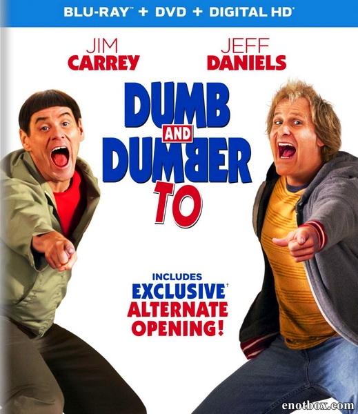 Тупой и еще тупее 2 / Dumb and Dumber To (2014/BDRip/HDRip)