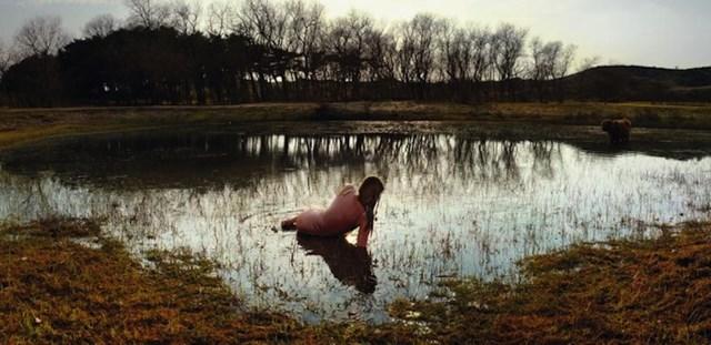 Голландские сказки Эллен Куи