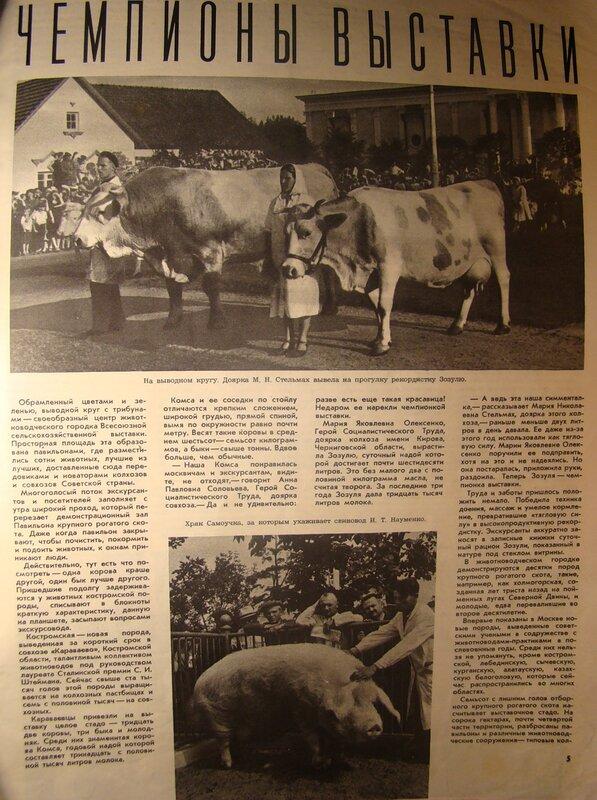 Огонёк, 1954 год