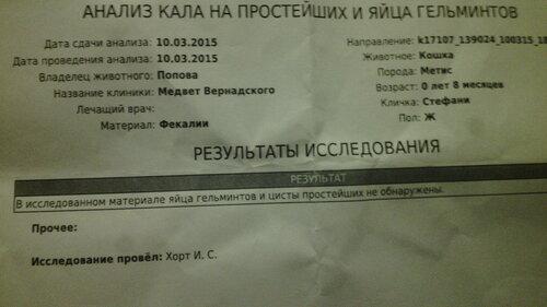 https://img-fotki.yandex.ru/get/4515/50951434.19/0_126533_43c7cae_L.jpg