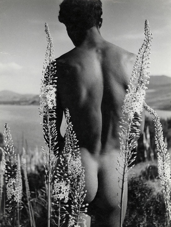 Арабский юноша среди цветов. 1935.