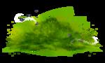 grass (39).png