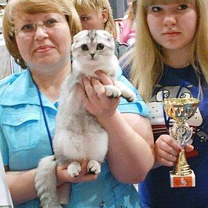 Best Kitten - 122 Angel INS LAURA (Female) SFS Корева О. Н.,