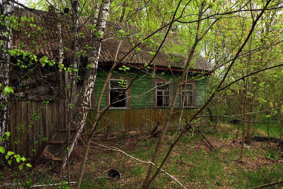 Долгая дорога в Припять. Часть 4