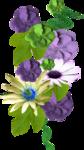 «Violet_Surprise» 0_64058_12a9c70d_S