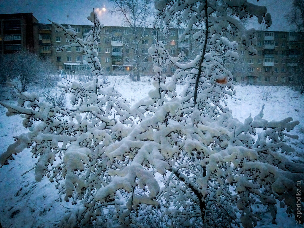 В Златоусте началась зима