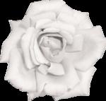 Vintage_Roses_Lilas_el (37).png