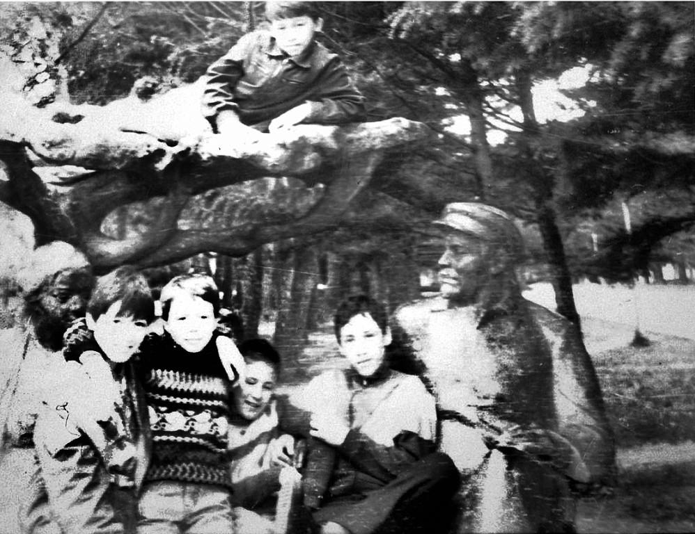 Смотреть фото санаторно лесная школа геленджик