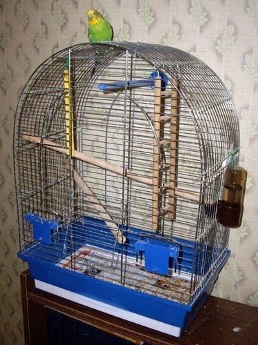 Как сделать клетку для попугая инструкция
