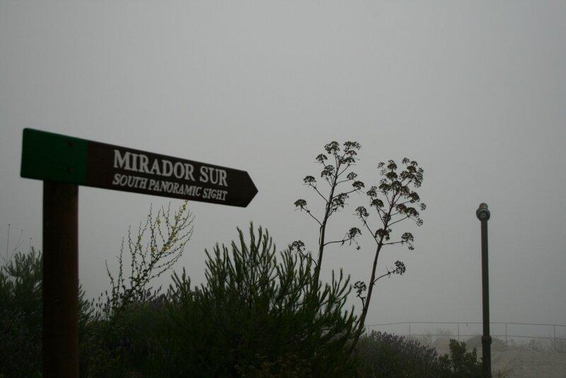 Мирадор