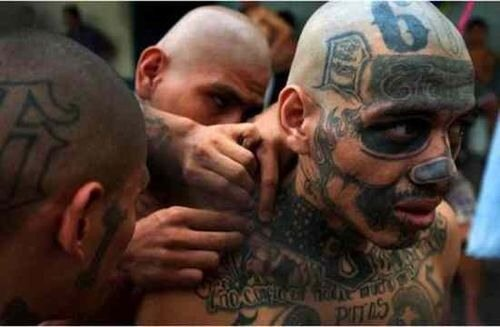 Mara Salvatrucha MS-13