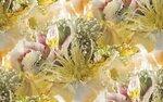 blooms7_1 (10).jpg