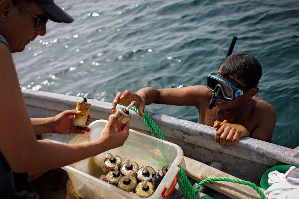динамит для рыбалки фото