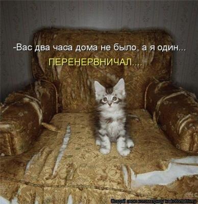 http://img-fotki.yandex.ru/get/4517/124059564.0/0_667d7_16a8ead9_L.jpg